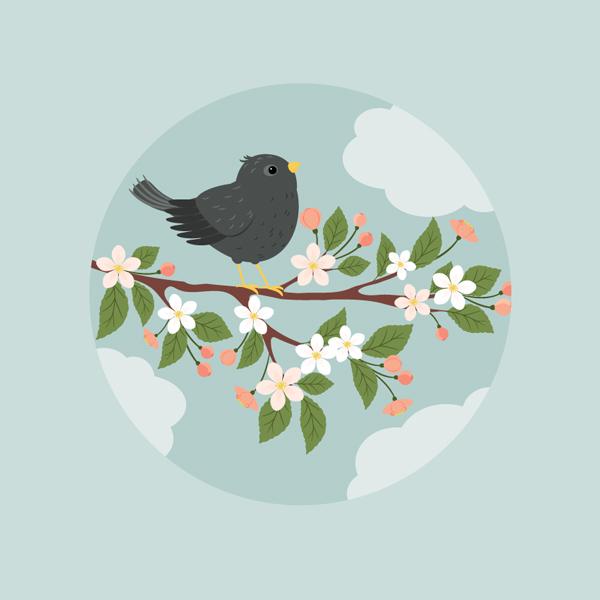 简单的教你画一幅春日鸟鸣花开的插图